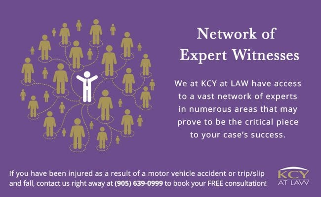 Network of Expert Witnesses